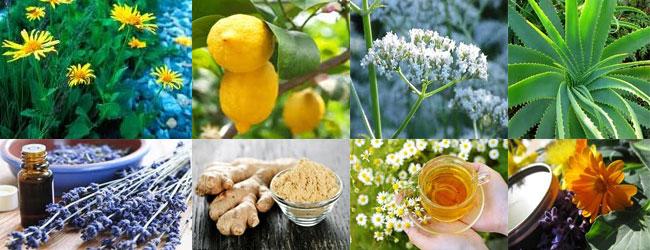 medicina naturale, come curarsi